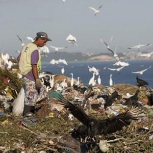 ¿Cuánto puede durar la basura al aire libre? bolsas ecologicas ebags publicidad