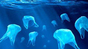Día Internacional Libre de Bolsas de Plástico bolsas ecologicas ebags publicidad